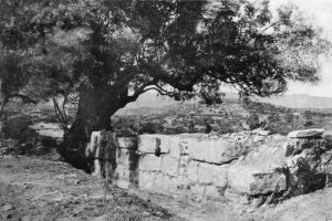 Kalathiana, House H in settlement.