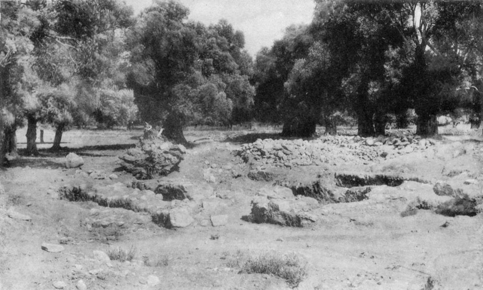 <p> S. Xanthoudides, <em>The Vaulted Tombs of Mesara</em> (1924), pl. XLVIIa</p>