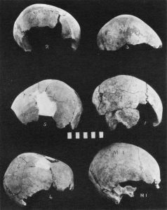 Skulls from the Mesara Tholoi.